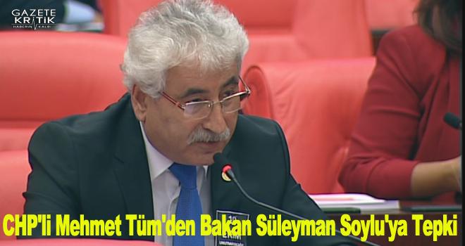 CHP'li Mehmet Tüm'den Bakan Süleyman Soylu'ya Tepki
