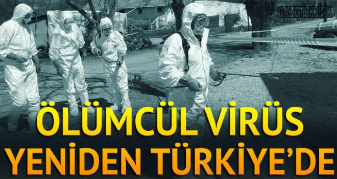 Ölümcül virüs yeniden Türkiye'de