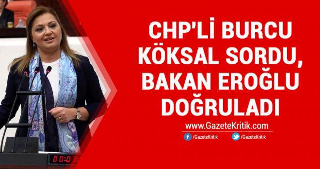 CHP'li Burcu Köksal sordu, Bakan Eroğlu doğruladı;