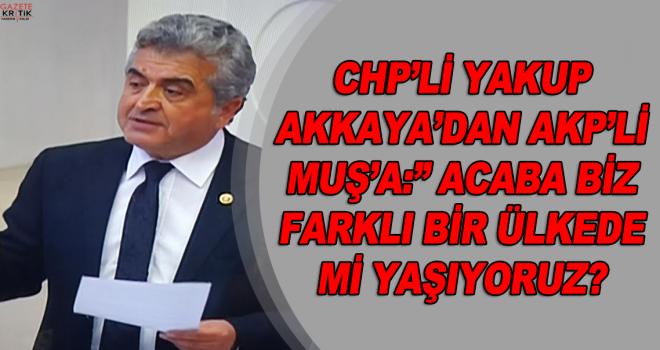 """CHP'Lİ YAKUP AKKAYA'DAN AKP'Lİ MUŞ'A:"""" ACABA BİZ FARKLI BİR ÜLKEDE Mİ YAŞIYORUZ?"""
