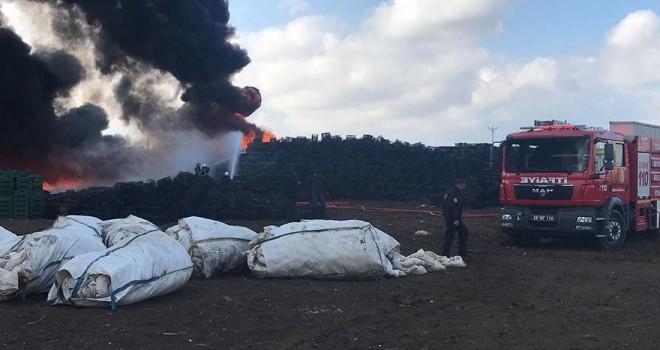 Eskişehir'de korkutan yangın