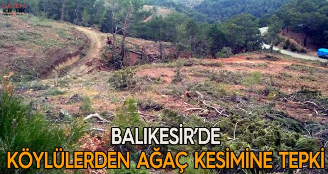 Balıkesir'de köylülerden ağaç kesimine tepki