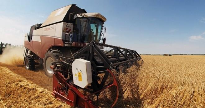 Rusya: Türkiye'nin Rus tarım ürünleri konusundaki eylemlerine simetrik yanıt vereceğiz