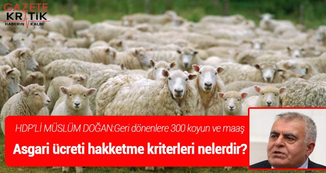 HDP'Lİ MÜSLÜM DOĞAN:Geri dönenlere 300 koyun ve maaş