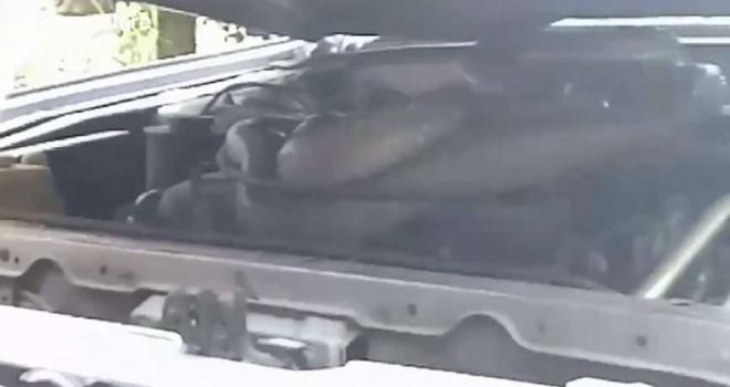 Otomobilden gelen sesin nedenini öğrenince gözlerine inanamadı