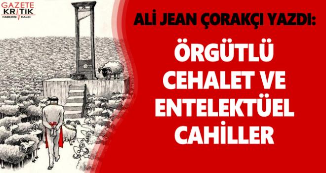 ALİ JEAN ÇORAKÇI YAZDI : Örgütlü Cehalet ve Entelektüel Cahiller