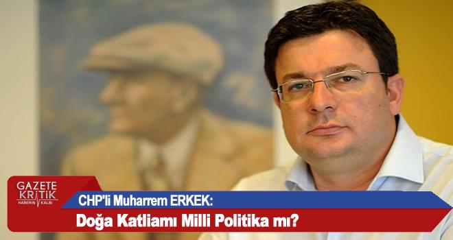 CHP'li Muharrem ERKEK: Doğa Katliamı Milli Politika mı?