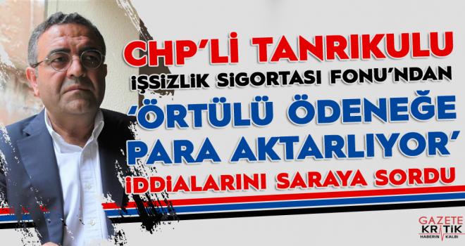 CHP'li Tanrıkulu İşsizlik Fonundan Örtülü Ödeneğe Para Aktarıldı İddialarını Sordu