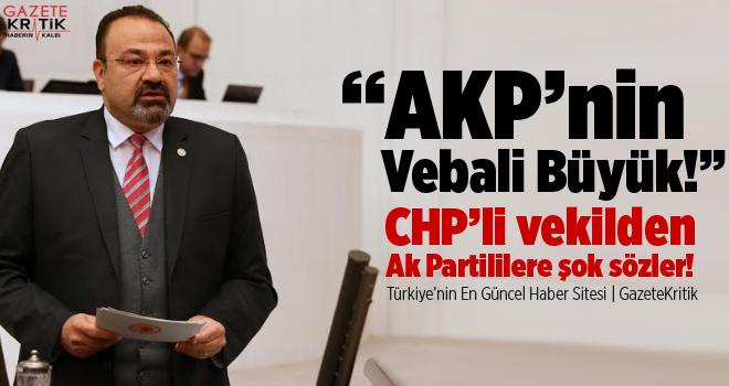 CHP'li vekilden Ak Partililere şok sözler!
