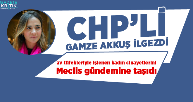 CHP'li Gamze Akkuş İlgezdi, av tüfekleriyle işlenen kadın cinayetlerini Meclis gündemine taşıdı