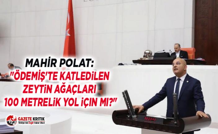 """MAHİR POLAT: """"ÖDEMİŞ'TE KATLEDİLEN ZEYTİN AĞAÇLARI 100 METRELİK YOL İÇİN Mİ?"""""""