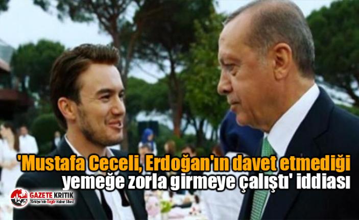 'Ceceli, Erdoğan'ın davet etmediği yemeğe zorla girmeye çalıştı' iddiası