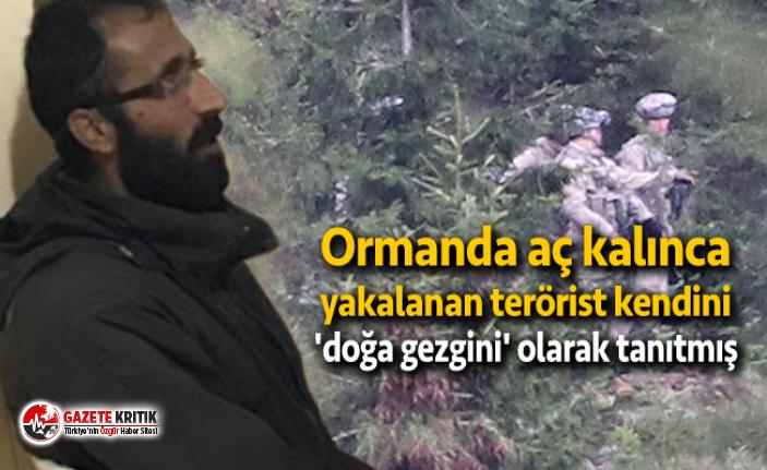 Ormanda aç kalınca yakalanan terörist kendini 'doğa gezgini' olarak tanıtmış