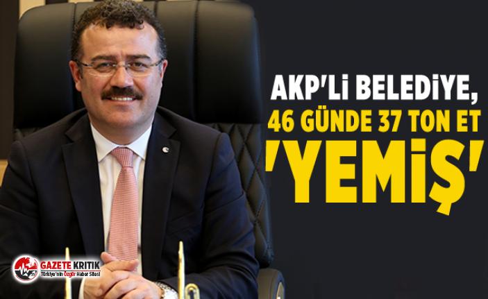 AKP'li belediye, 46 günde 37 ton et 'yemiş'