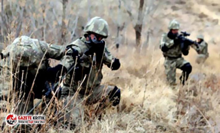 Lice'de 2 terörist etkisiz hale getirildi