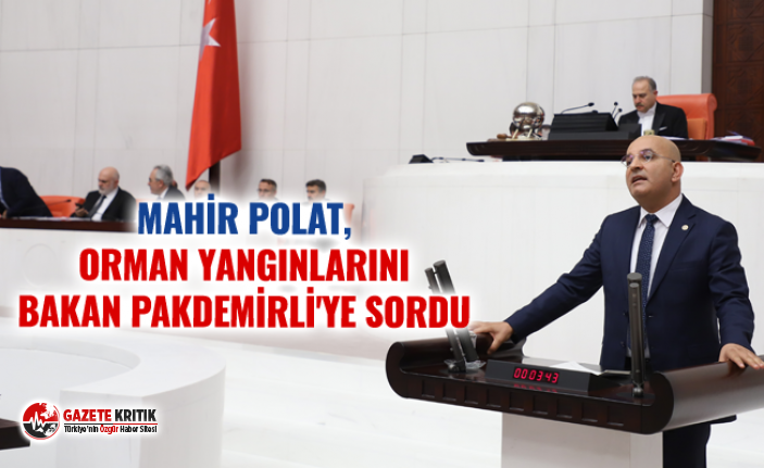 MAHİR POLAT, ORMAN YANGINLARINI BAKAN PAKDEMİRLİ'YE SORDU