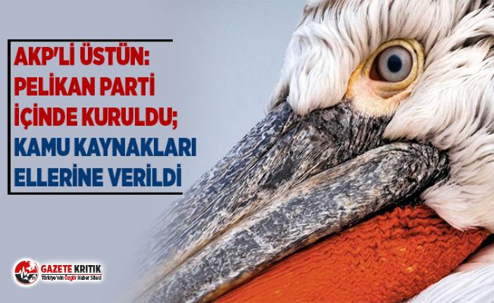 AKP'li Üstün: Pelikan parti içinde kuruldu; kamu kaynakları ellerine verildi
