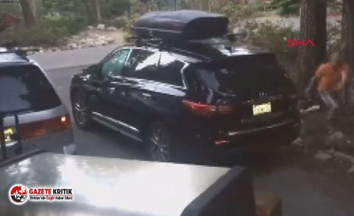 Aracında hırsız var sandı, 'ayı' çıktı