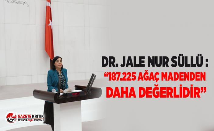 """Dr. Jale Nur Süllü :""""187.225 AĞAÇ MADENDEN DAHA DEĞERLİDİR"""""""