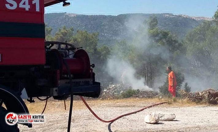 Piknikçilerin mangal ateşinden yangın çıktı