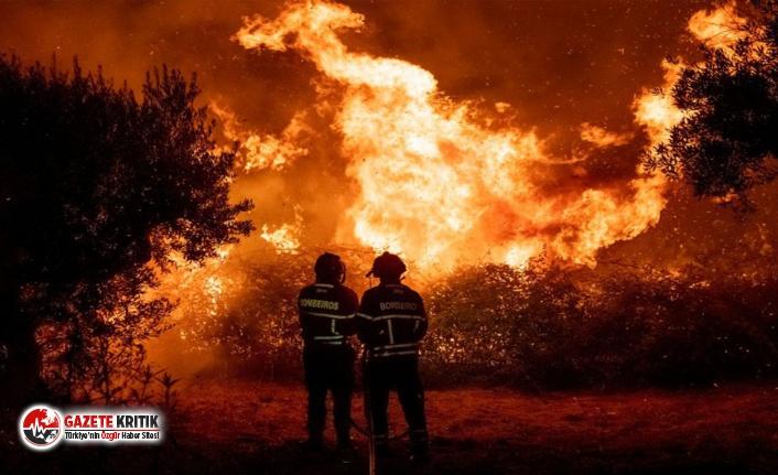Portekiz 3 gündür orman yangınıyla savaşıyor