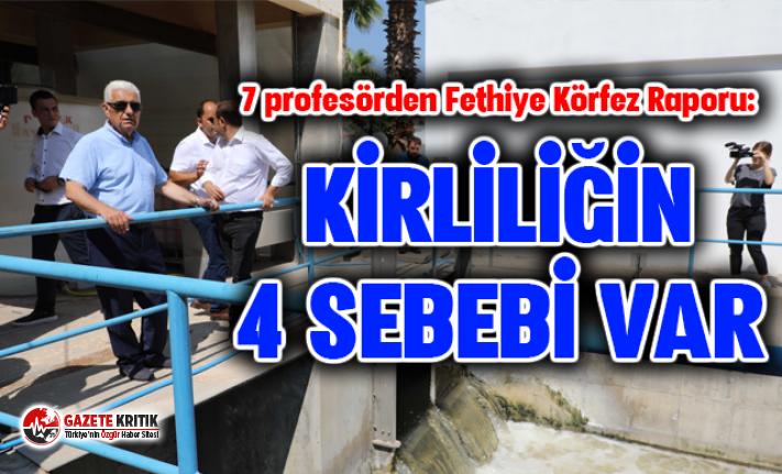 7 profesörden Fethiye Körfez Raporu: Kirliliğin sebebi arıtma tesisi değil