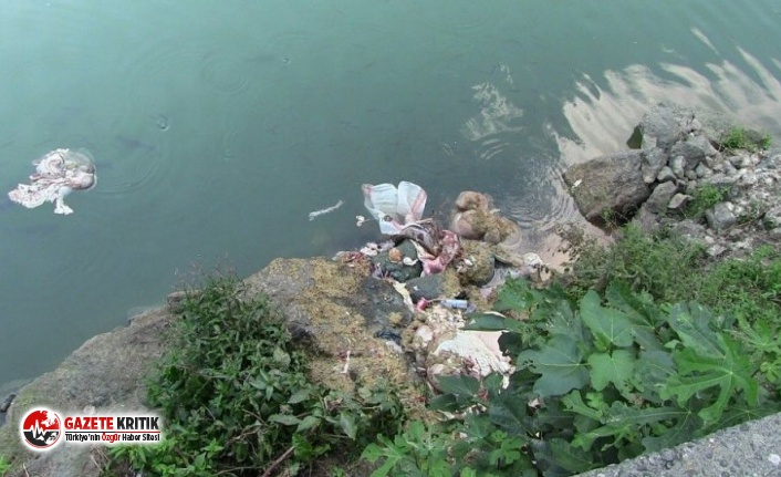 Artvin'de kurban atıklarını baraj gölüne attılar