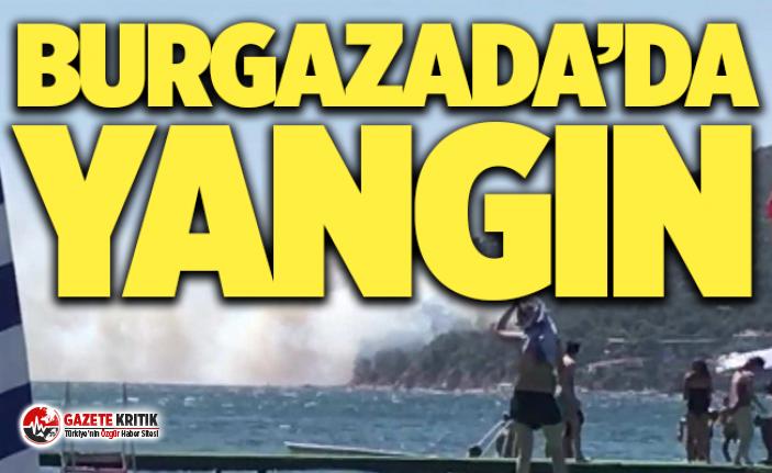 Burgazada'da ormanlık alanda yangın çıktı