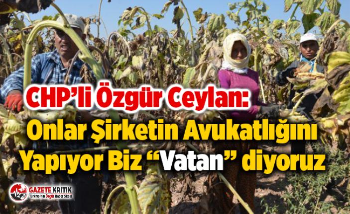 """CHP'li Ceylan: Onlar Şirketin Avukatlığını Yapıyor Biz """"Vatan"""" diyoruz"""