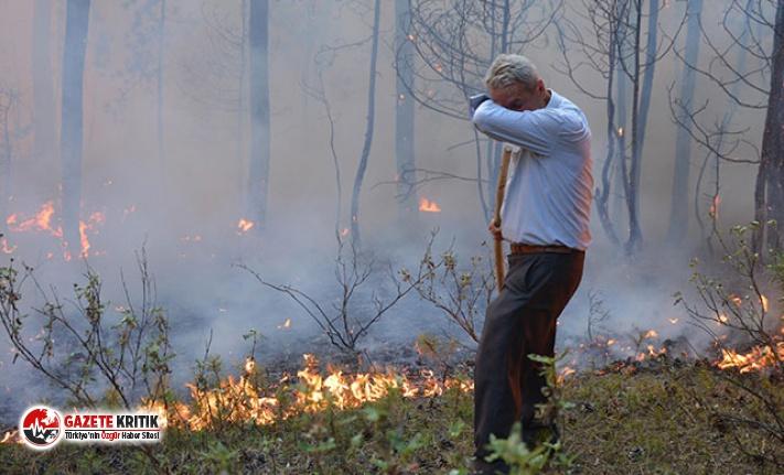 Karaçam ormanında büyük yangın!