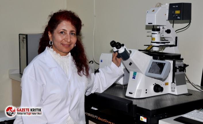 Karaciğer kanserinin tanı ve tedavisinde yapay zeka desteği