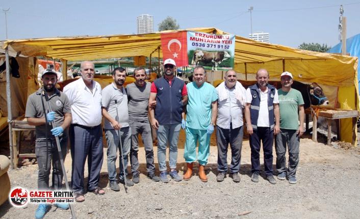 Kartal Belediyesi Kurban Bayramı Hizmetleri İle Göz Doldurdu