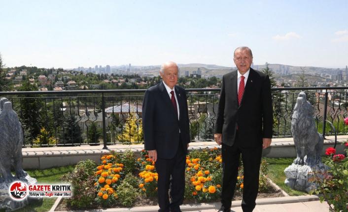 Murat Yetkin yazdı: Erdoğan'a Bahçeli'nin bozkurt heykelleri önünde poz verdirten koşullar