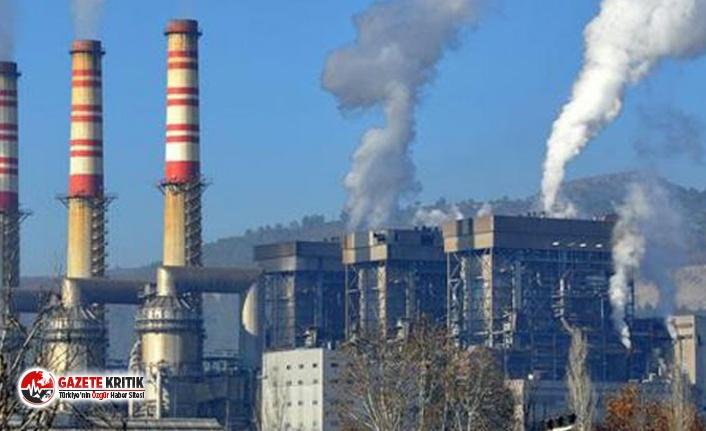 """Termik santral bir köyü yok ediyor: """"Köydeki 100 kişiden 90'ı kanser"""""""
