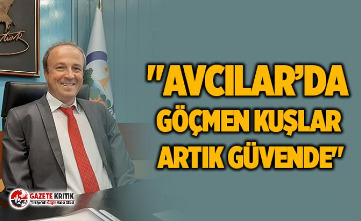 """""""AVCILAR'DA GÖÇMEN KUŞLAR ARTIK GÜVENDE"""""""