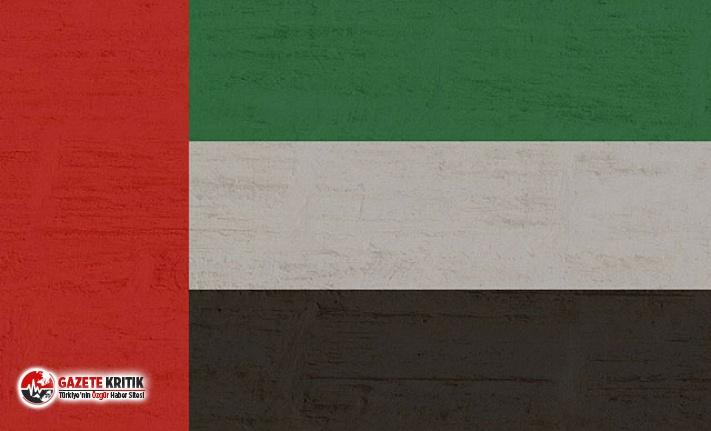 BAE: Yemen'deki kazada 6 askerimiz öldü