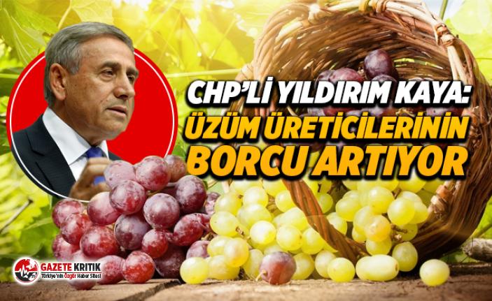CHP'Lİ YILDIRIM KAYA: Üzüm Üreticilerinin Borçları Artıyor