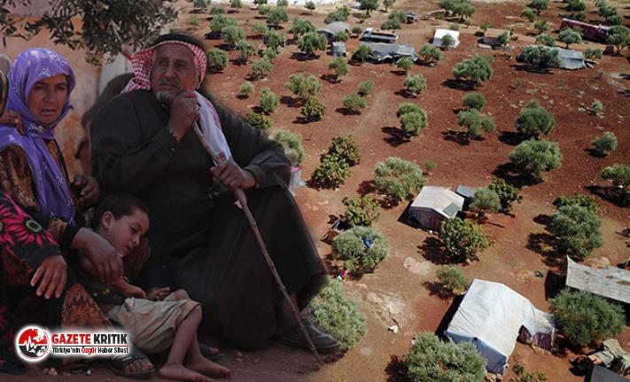 İdlib'den kaçanlar, Türkiye sınırındaki köylere yerleşiyor