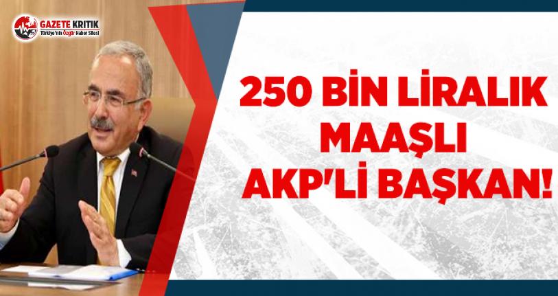 250 bin liralık maaşlı AKP'li başkan!