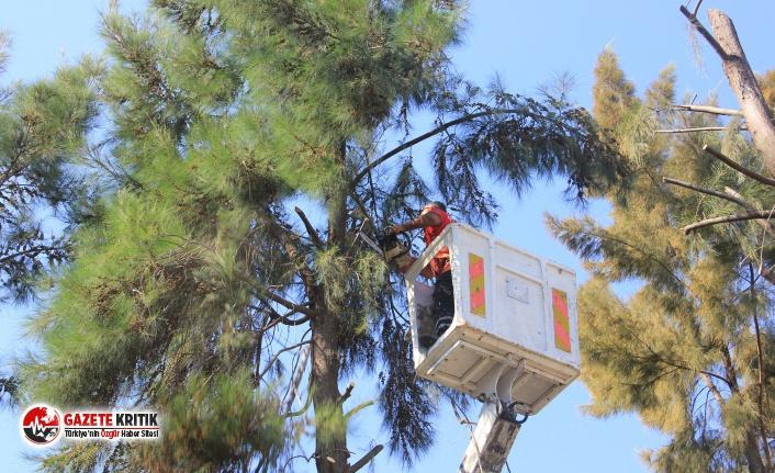 Çiğli'de kış hazırlıkları