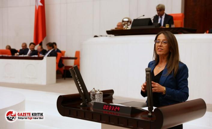 Milletvekili Oya Aksoy, Bakan Albayrak'a asgari ücret ile nasıl geçinilebiliri sordu