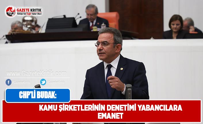 CHP'li Budak: Kamu Şirketlerinin Denetimi Yabancılara Emanet