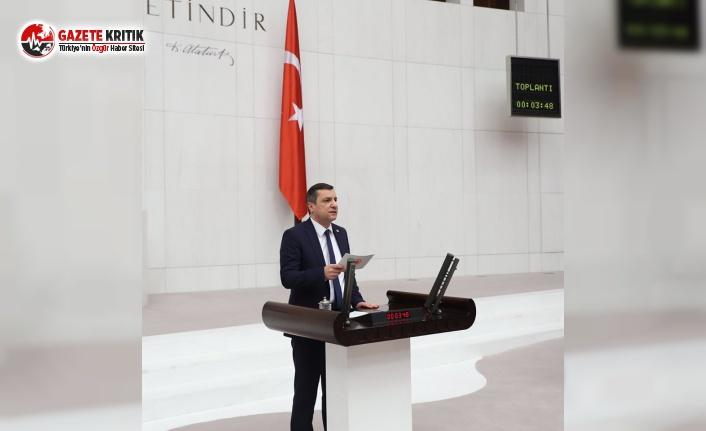 CHP'li Ceylan'dan TMO'ya Verilen İthalat Yetkisine Tepki