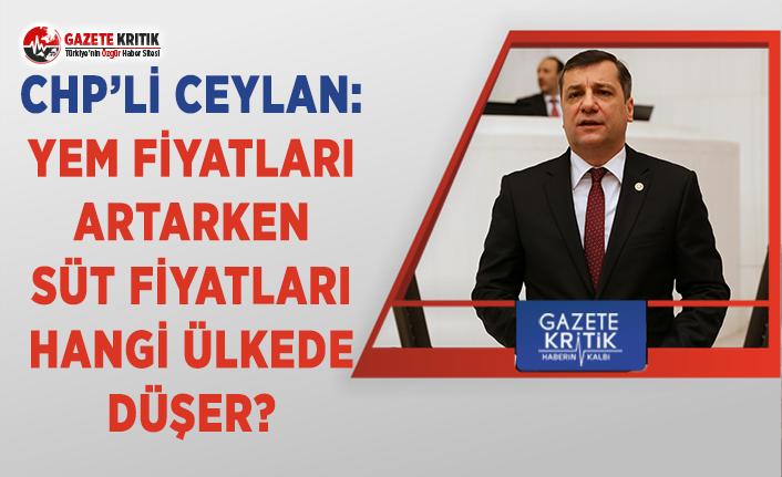CHP'li Ceylan: Yem Fiyatları Artarken Süt Fiyatları Hangi Ülkede Düşer?