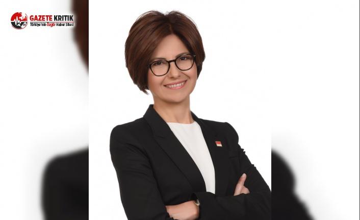 CHP'li Emecan, Dışişleri Bakanlığı Bütçesi'ni Değerlendirdi