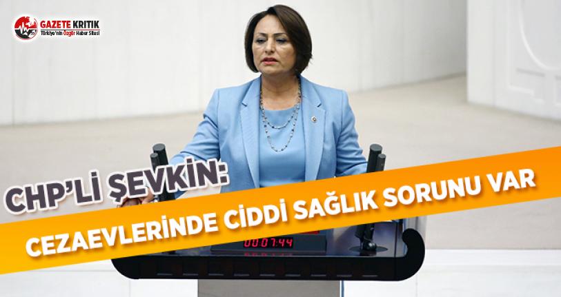 CHP'li Şevkin: Cezaevlerinde Ciddi Sağlık Sorunu Var!