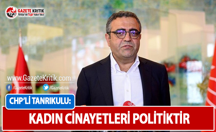 CHP'li Tanrıkulu: Kadın Cinayetleri Politiktir