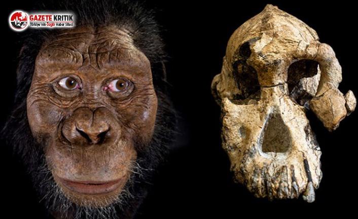 İşte 3.8 Milyon Yıllık Atamız