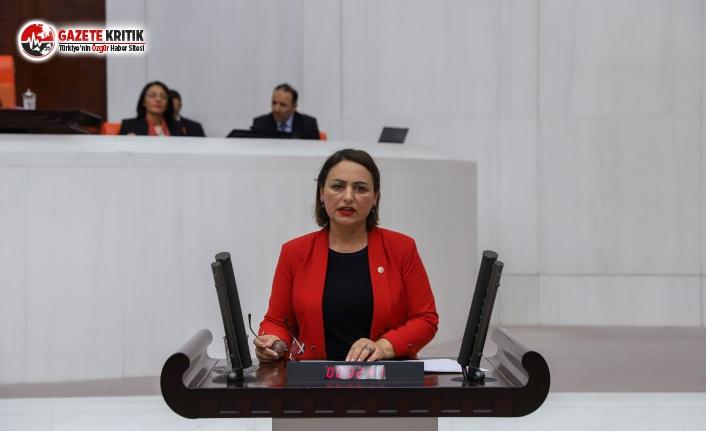 CHP'li Şevkin: Bakan Gül Söz Verdi, Kapanan Adliyeler Açılacak