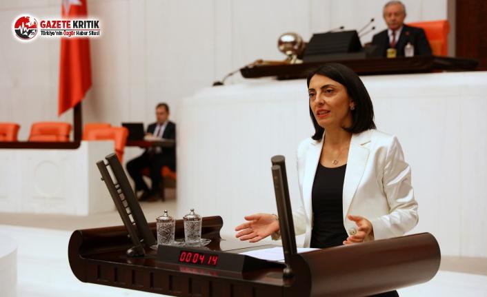 CHP'li Kayışoğlu: Karacabeyli Üreticilerin Mağduriyeti Giderilecek Mi?